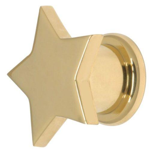 Steel Basicline® Screw Front Fleshtunnel Gold Star
